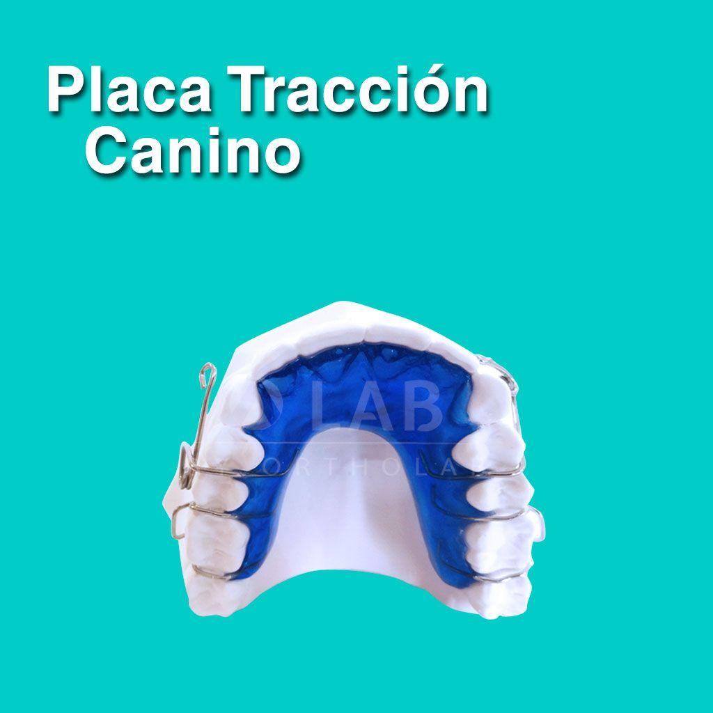 Placa Tracción Canino Placas Activas Ortodoncia