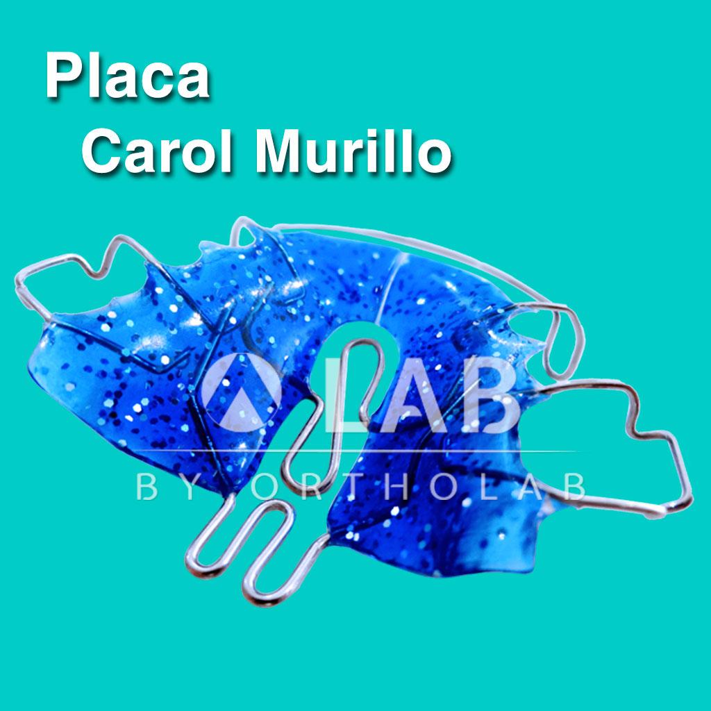 Placa Carol Murillo Placas Activas Aparatología Ortodoncia